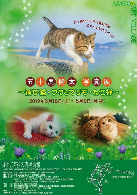 「五十嵐健太写真展~飛び猫・フクとマリモ・ねこ禅~」