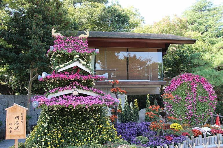 第91回明石公園菊花展覧会