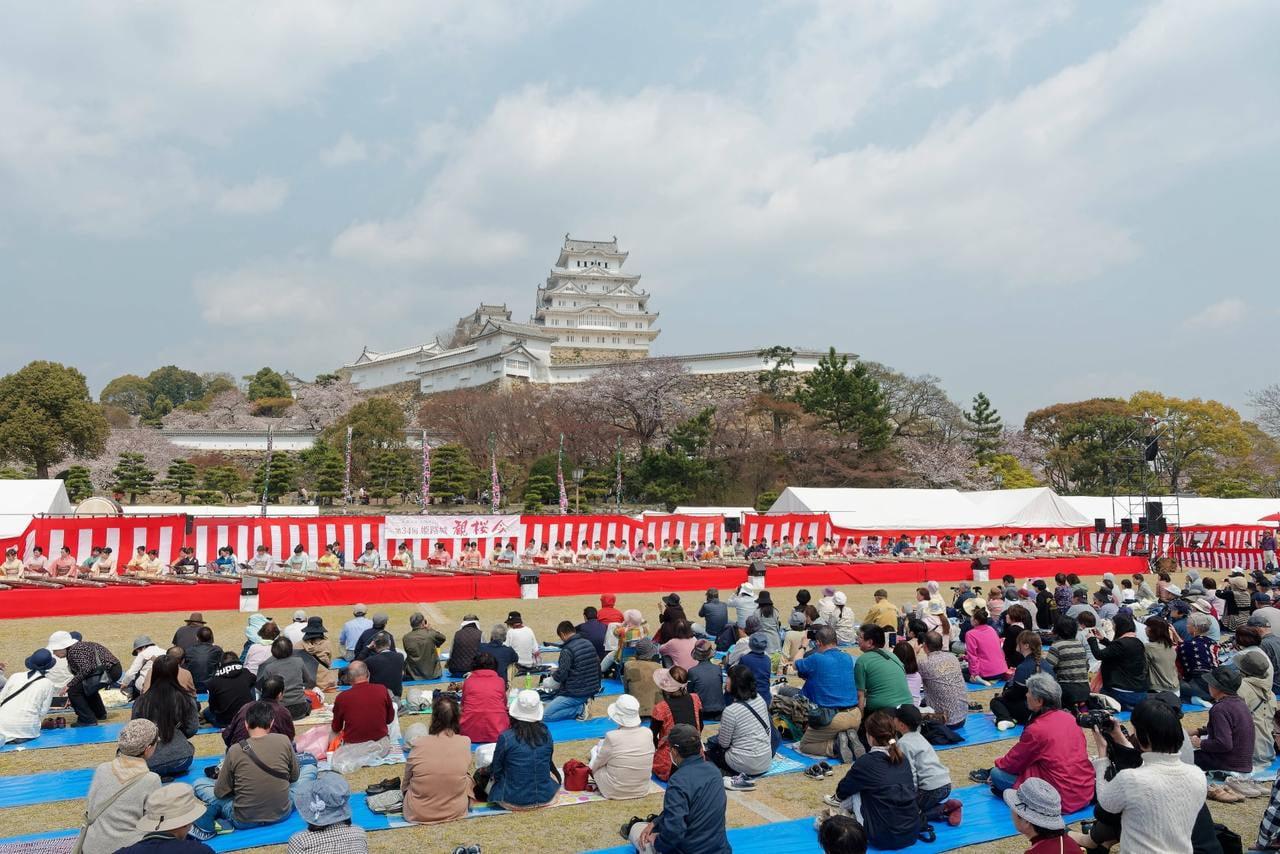 第35回 姫路城観桜会