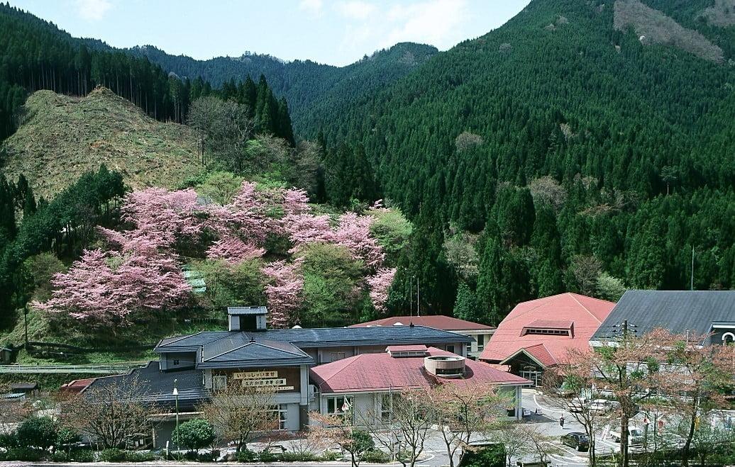 楓香荘 春のミニウォークラリー
