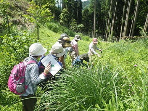 県立国見の森公園プログラム アサギマダラの舞う森づくり ※プログラムの中止・内容変更の可能性あり