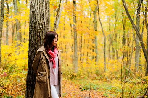 たじま高原植物園の紅葉