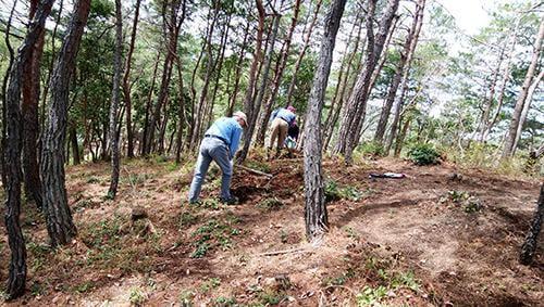 県立国見の森公園プログラム 国見マツタケ山整備 ボランティア活動