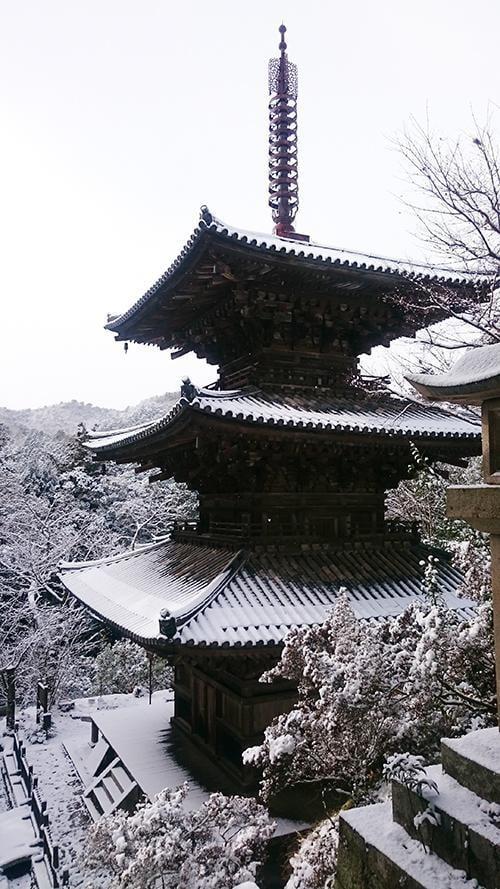 第8回加西風土記の里ウォーク2020 国宝一乗寺散策コース