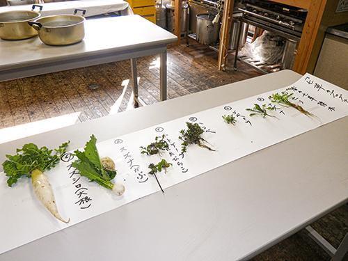 県立国見の森公園プログラム 春の七草粥を食べよう