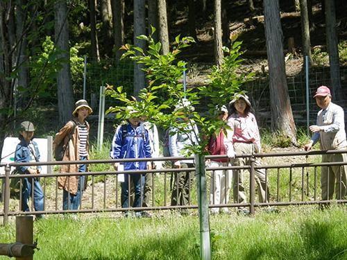 県立国見の森公園プログラム 国見の春 自然観察会