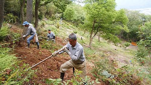 県立国見の森公園プログラム 栗園の整備