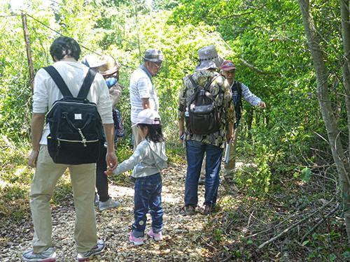 県立国見の森公園プログラム 国見の夏 自然観察会