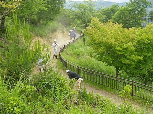 県立国見の森公園プログラム 遊歩道の整備 ボランティア活動