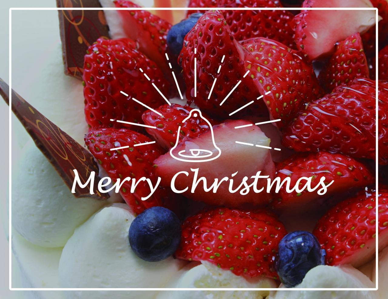 【2017年】今年はどれにする?姫路のクリスマスケーキ5選