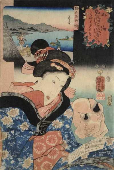 960-112播州高砂蛸.jpg