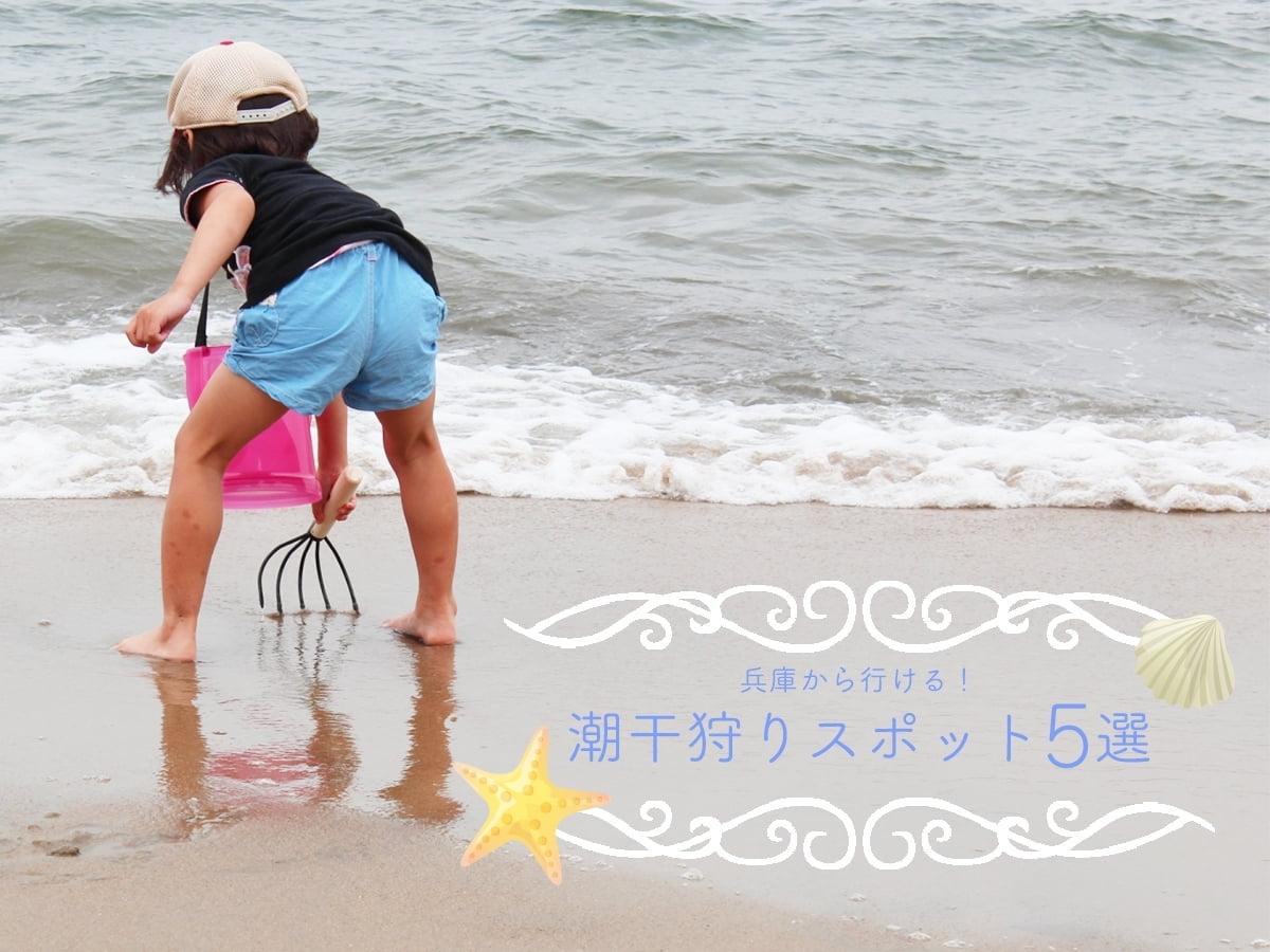 兵庫県潮干狩りスポット5選!無料・穴場・人気ポイント徹底攻略