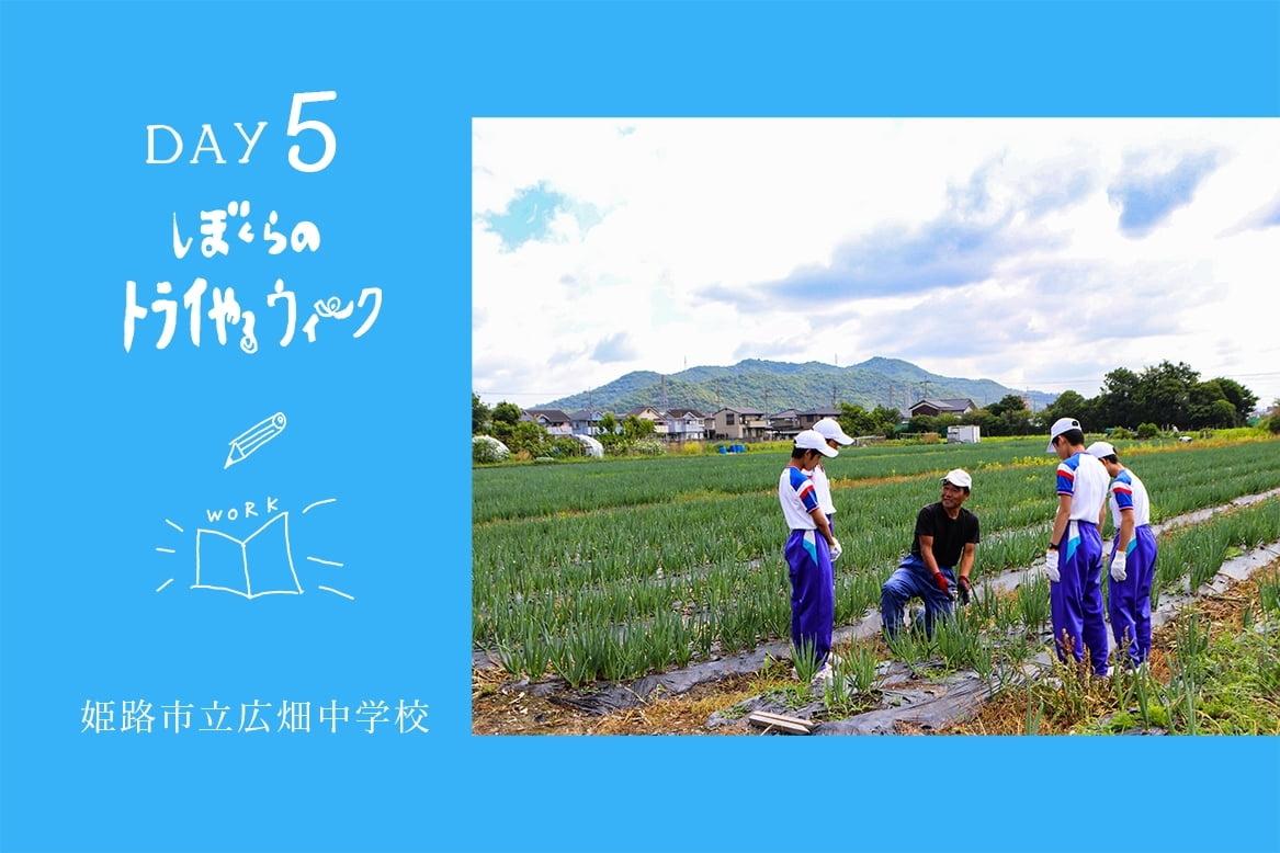 【2018】ぼくらのトライやる・ウィーク 姫路市立広畑中学校【期間中毎日更新!】