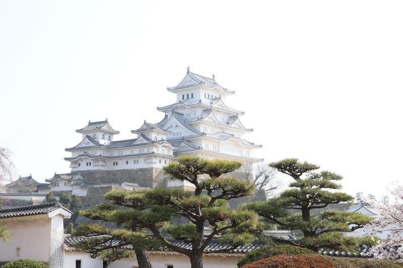 地元ライターが教える!姫路城の見どころ&フォトスポットまとめ