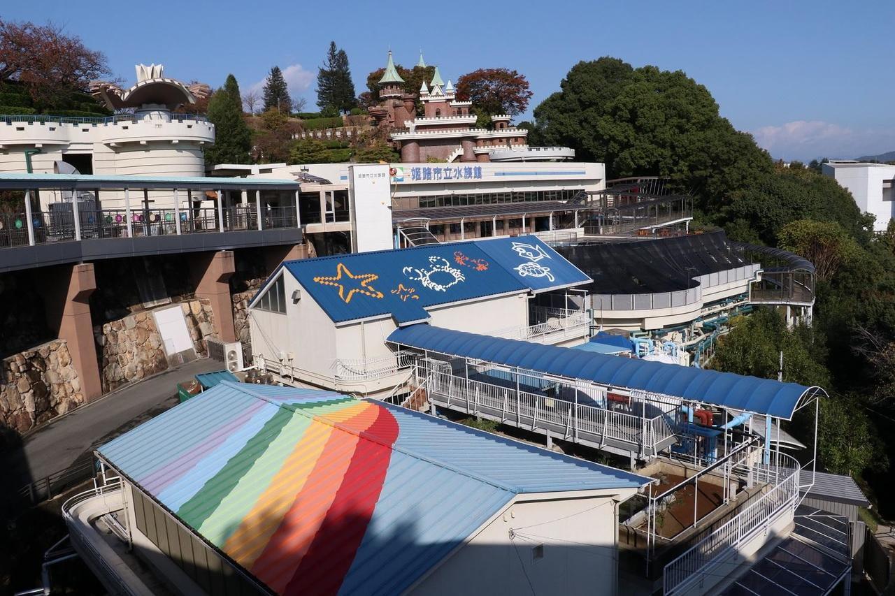 みんな知ってる?ひょうごの水産業~未来につなごう豊かな海~姫路市立水族館