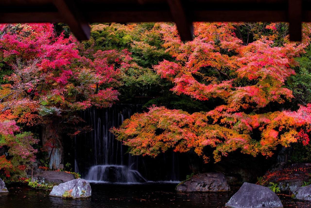 絶景!癒しの紅葉ぶらり散歩旅2018年兵庫県決定版