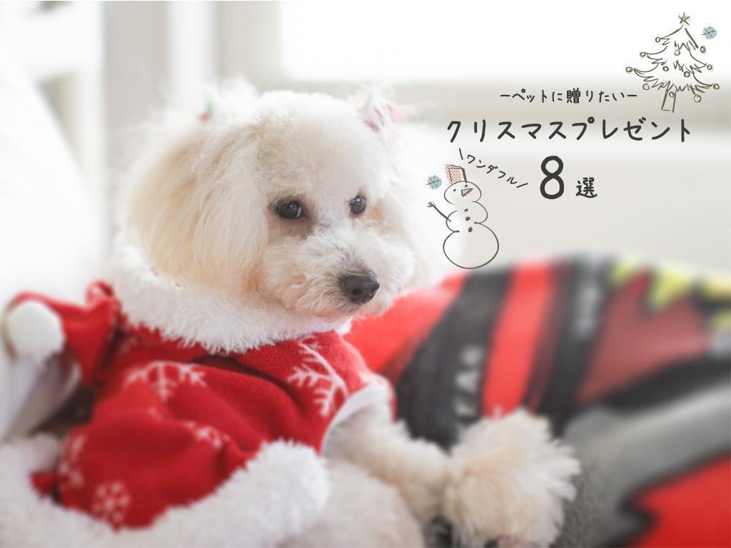 ペットに贈りたいワンダフルクリスマスプレゼント集