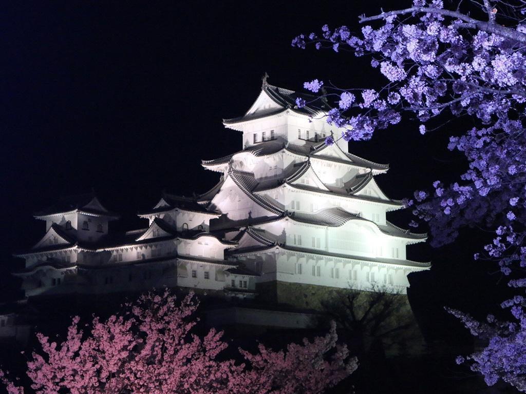 姫路城夜桜会【2019年4月3日~7日】