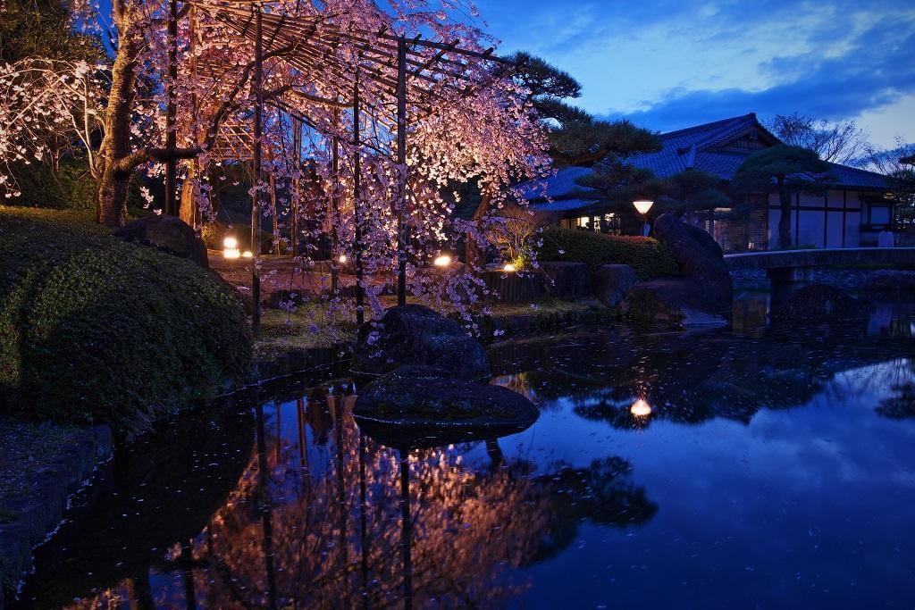 好古園夜桜会【2019年4月5日~7日】