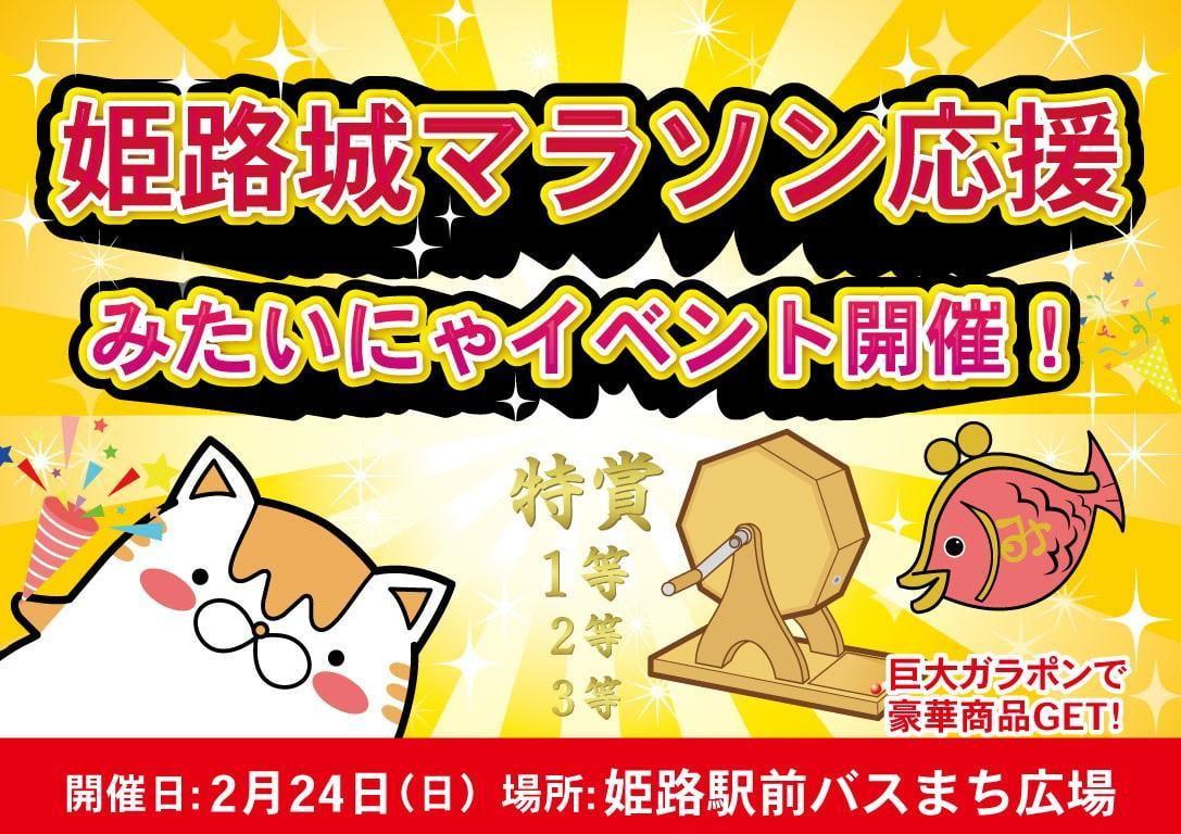 姫路城マラソン2019応援みたいにゃイベント@バスまち広場【2月24日】
