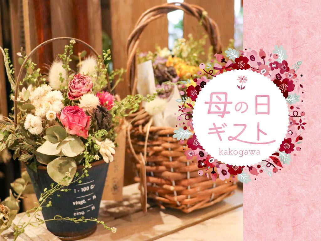 【兵庫】駅近で母の日ギフトが買えるおすすめの人気花屋まとめ~加古川~
