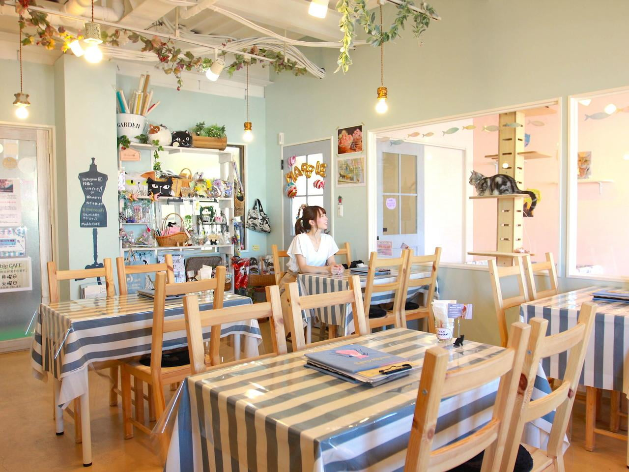 【高砂】人気の「肉球パフェ」も楽しめる猫カフェ「マーブルカフェ(Marble CAFE)」