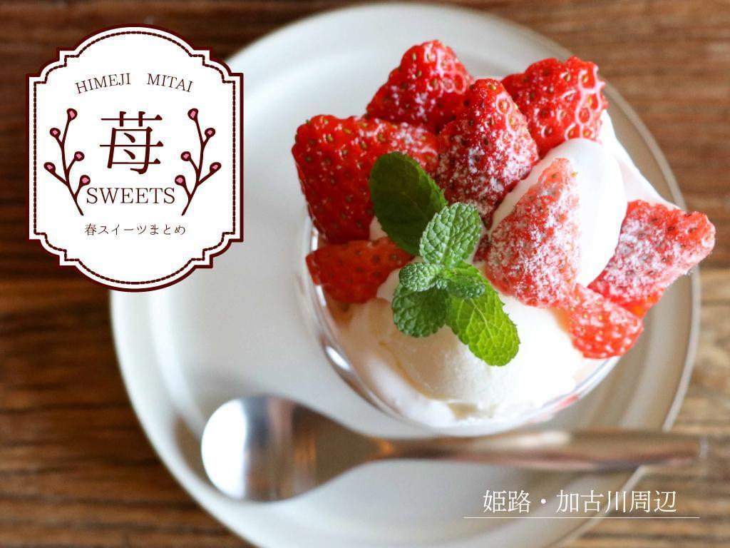【姫路 加古川 赤穂 佐用】いま食べに行きたい!春の宝石「いちごスイーツ」7選
