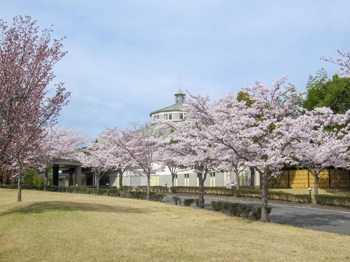 【兵庫】桜×ゴルフ 桜が楽しめる!春のオススメお花見ゴルフ場10選
