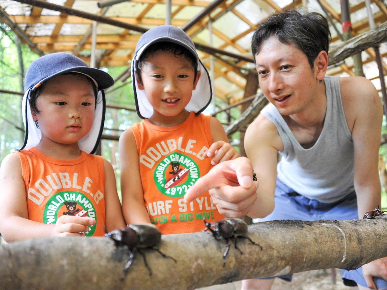 【関西 兵庫】昆虫と遊ぼう!見て触れて学べる昆虫館5選 最新イベント・休館情報も