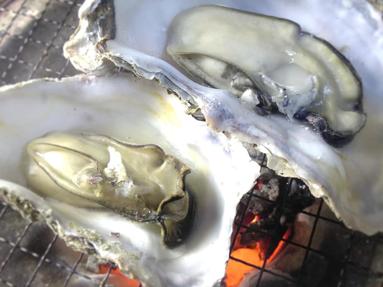牡蠣祭り2021最新中止情報まとめ【相生/網干/坊勢/日生/牛窓】随時更新