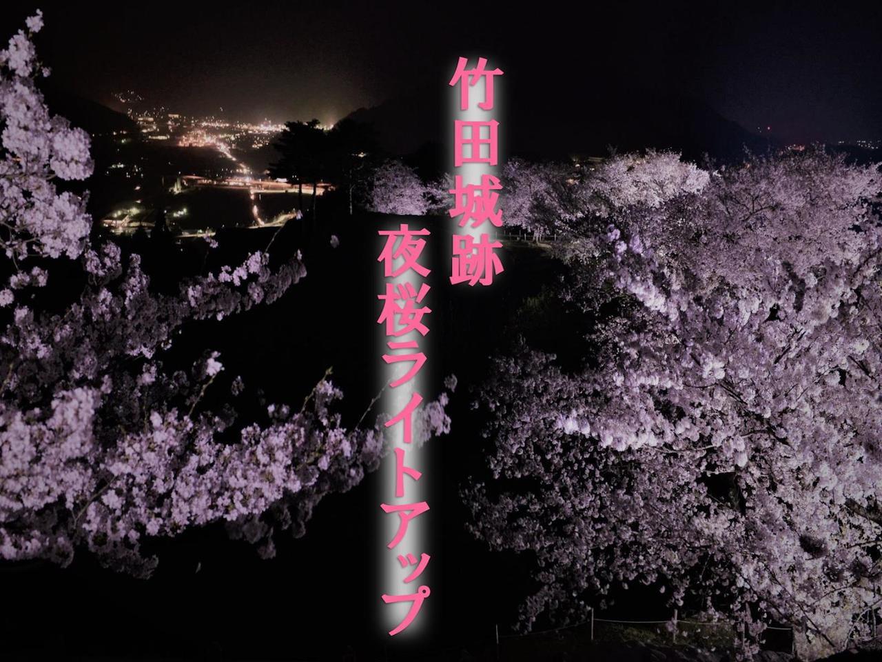 【兵庫・朝来】竹田城跡 夜桜ライトアップ~日本100名城~【2021】