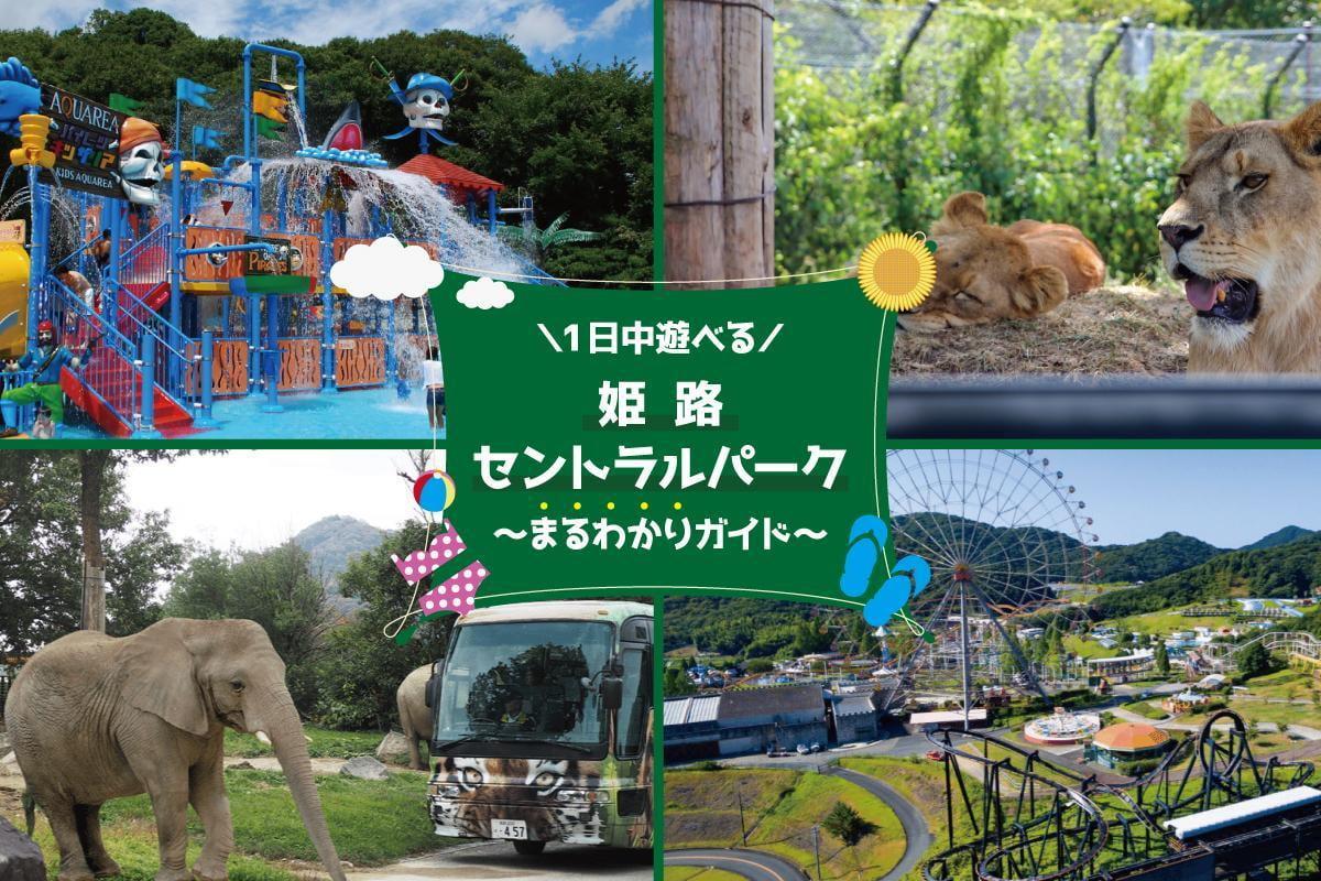 1日中遊べる【姫路セントラルパーク】サファリ・遊園地・プールで大満足◎