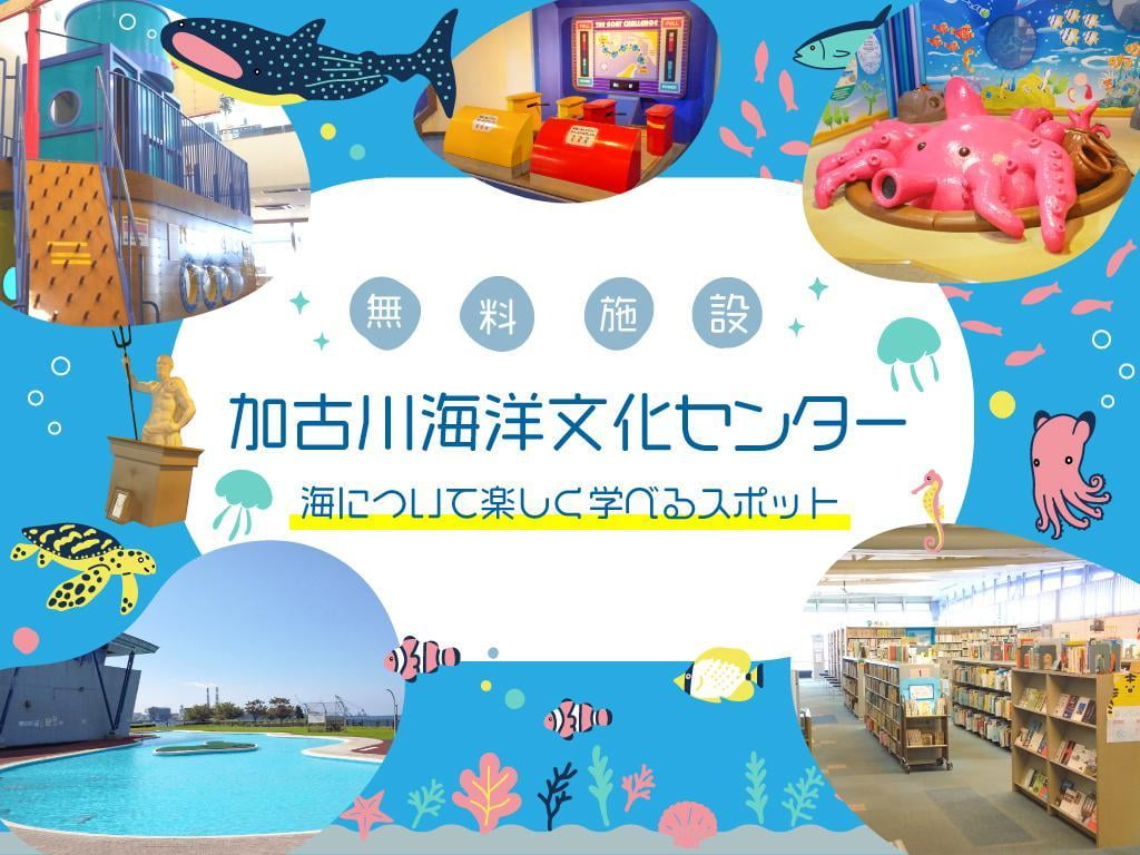 学べる・遊べる!無料施設「加古川海洋文化センター」図書室やアスレチックも