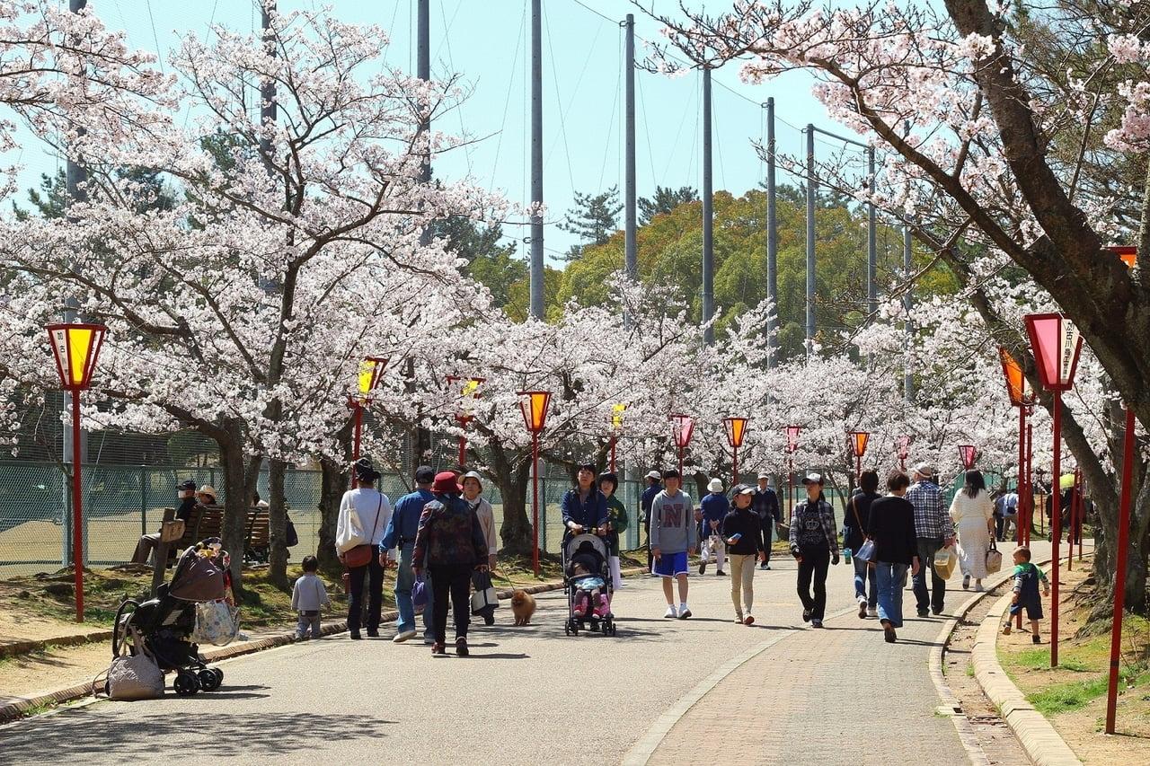 日岡山公園1.jpg